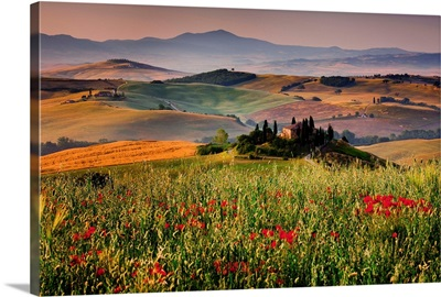 Italy, Tuscany, Orcia Valley, Typical country house near San Quirico d'Orcia
