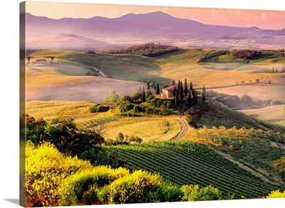 Italy, Tuscany, Orcia Valley, Typical landscape near San Quirico d'Orcia town