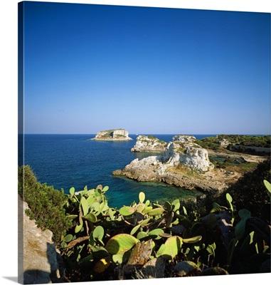 Italy, Tuscany, Pianosa, Cala dei Turchi and the La Scola islet