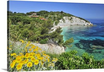 Italy, Tuscany, Tuscan Archipelago National Park, Elba island, Padulella beach