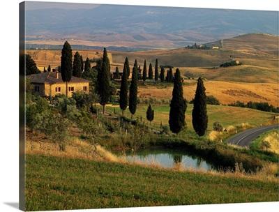 Italy, Tuscany, Typical landscape near Pienza
