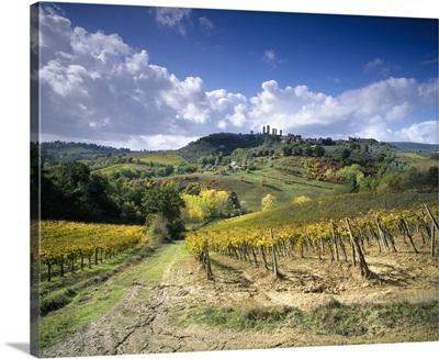 Italy, Tuscany, Val d'Elsa, San Gimignano, Siena district