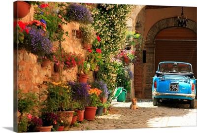 Italy, Umbria, Mediterranean area, Perugia district, Spello
