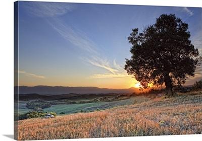 Italy, Umbria, Mediterranean area, Terni district, Countryside near Montecastrilli