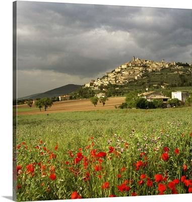 Italy, Umbria, Trevi, Mediterranean area, Perugia district