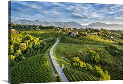 Italy, Veneto, Prosecco Road, Treviso district, Collalbrigo
