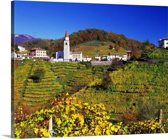 Italy, Veneto, Treviso district, Prealps, Prosecco Road, Rolle ...