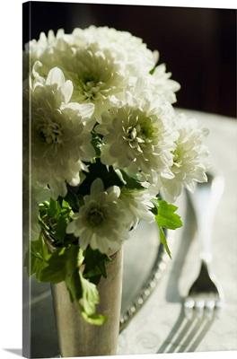 Italy, Venice, Fondamenta Zattere ai Gesuiti, fresh flowers