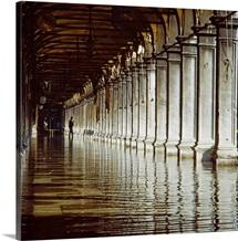 Italy, Venice, Porch of Procuratie Vecchie, reflection