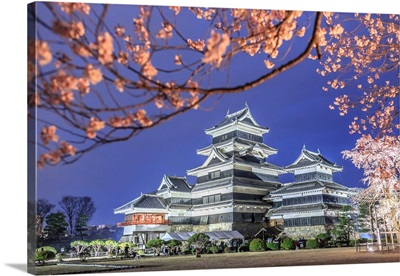 Japan, Chubu, Matsumoto, Matsumoto Castle During The Cherry Blossom, Sakura, By Night