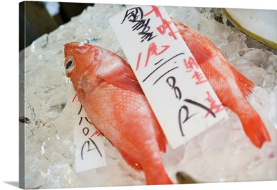Japan, Hokkaido, Sapporo, Nijo Fish Market, central Sapporo