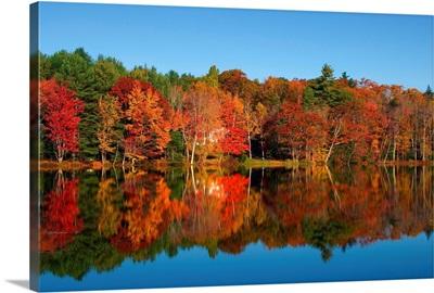 Maine, New England, Landscape at Moose Pond