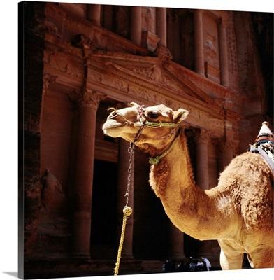 Middle East, Jordan, Petra, El Khazneh (the Treasury)