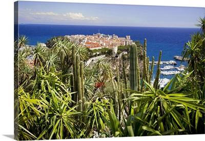 Monaco, Cote d'Azur, Monaco-Ville, View from the exotic garden towards Monaco
