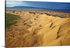 Mongolia, South Gobi, Gobi desert, Khongoryn Els dunes