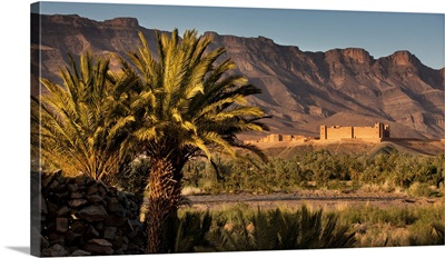 Morocco, Draa river valley, Landscape with the Kasbah of Tamnougalt