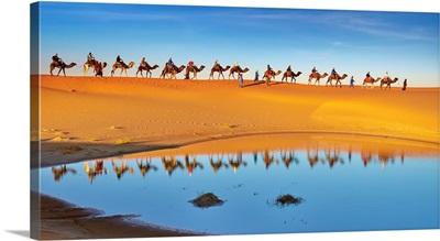 Morocco, Sahara Desert, Erg Chebbi Desert, Merzouga, Camel Trek In The Desert