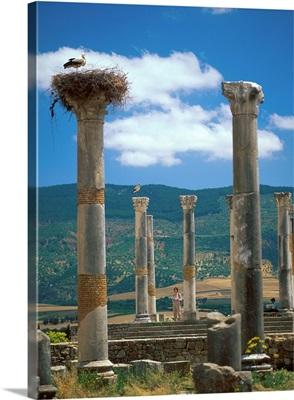 Morocco, Volubilis, Moulay Idriss, Roman ruins