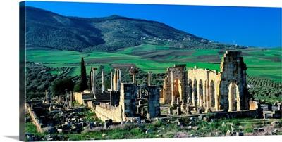 Morocco, Volubilis, Roman ruins, The Basilica and the forum