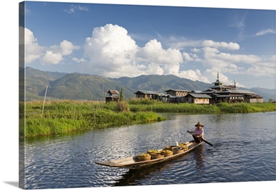 Myanmar, Woman rowing a boat full of green tomatoes for sale at a market
