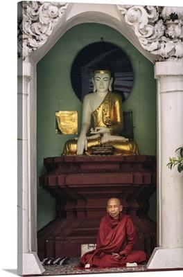 Myanmar, Yangon, Shwedagon Pagoda, Buddhist monk meditating