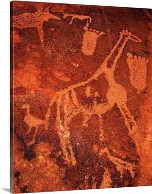 Namibia, Namib Desert, Damaraland, Twyfelfontein, rock engraving