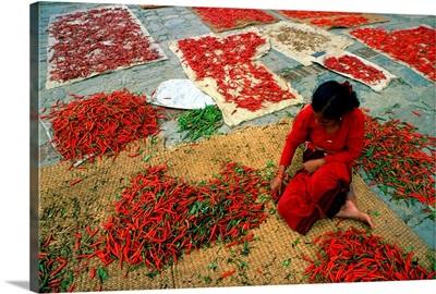 Nepal, Hot pepper, Traditional hot pepper