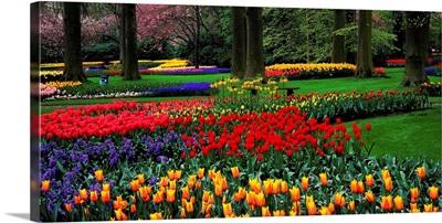 Netherlands, Lisse, Keukenhof Gardens