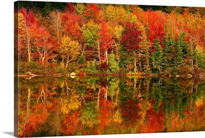New Hampshire, New England, White Mountains, Echo Lake in autumn