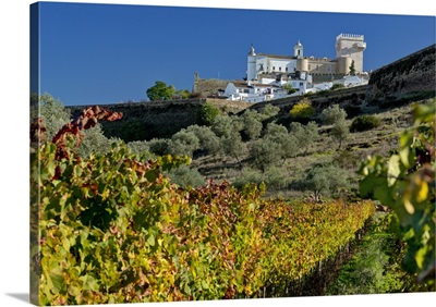 Portugal, Estremoz, Torre das Tres Coroas, Pousada Rainha Santa Isabel and vineyard