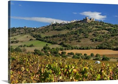 Portugal, Evora, Alentejo, Monsaraz, Vineyard with a medieval walled village