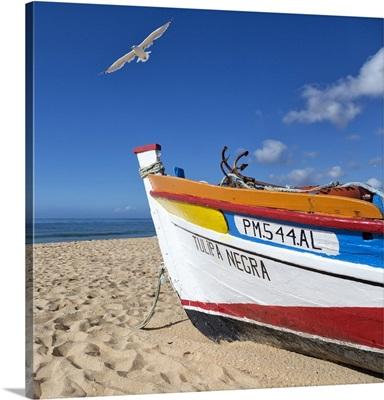 Portugal, Faro, Algarve, Alvor, Fishing boat and seagull, south coast of the Algarve