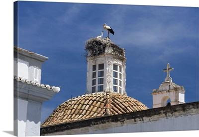 Portugal, Faro, Algarve, Faro, A stork's nest on a church dome in Faro town