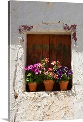 Portugal, Faro, Algarve, Flower pots, Odeleite in The Sotavento