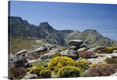 Portugal, Guarda, Beira Alta, Serra da Estrela, the Serra da Estrela mountains