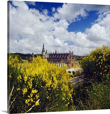 Portugal, Leiria, Batalha, Broom and the facade of the Cathedral