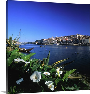 Portugal, Porto, historical center and Douro river