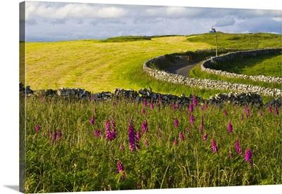 Scotland, Dumfries and Galloway, Port William, Monreith