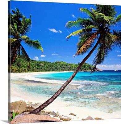 Seychelles, Mahe island, Tropics, Indian ocean, Anse Intendance