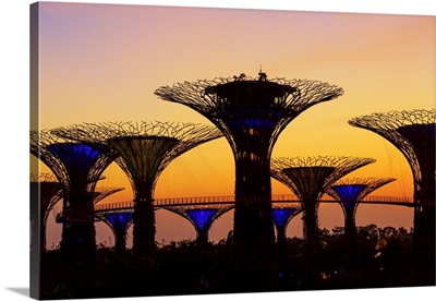 Singapore City, Gardens by the Bay park at sunrise