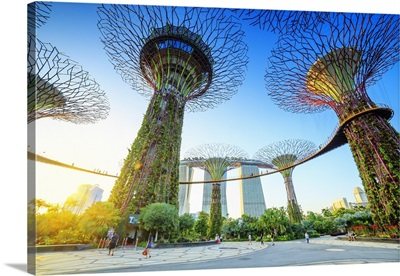 Singapore City, Marina Bay Sands and Gardens by the Bay trees