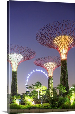 Singapore City, Singapore Flyer and Gardens by the Bay at night