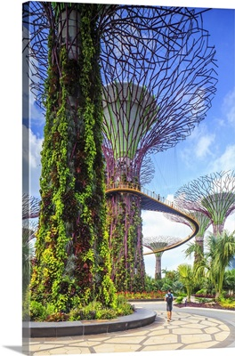 Singapore, Gardens by the Bay conservatory complex
