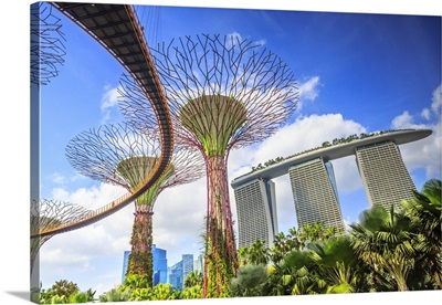 Singapore, Marina Bay Sands and Gardens by the Bay trees