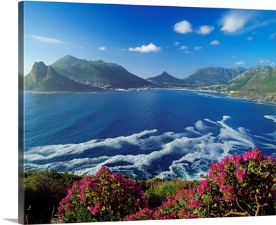 South Africa, Cape Peninsula, Hout Bay