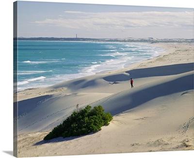South Africa, Western Cape, De Hoop Nature Reserve