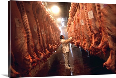 South America, Argentina, Buenos Aires, Slaughter house