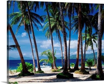 Southeast Asia, Philippines, Palawan, Taytay bay, Flower island