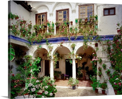 Spain, Andalucia, Typical courtyard (patio)