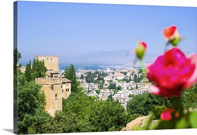 Spain, Andalusia, Granada district, View of the city from Alhambra Palace